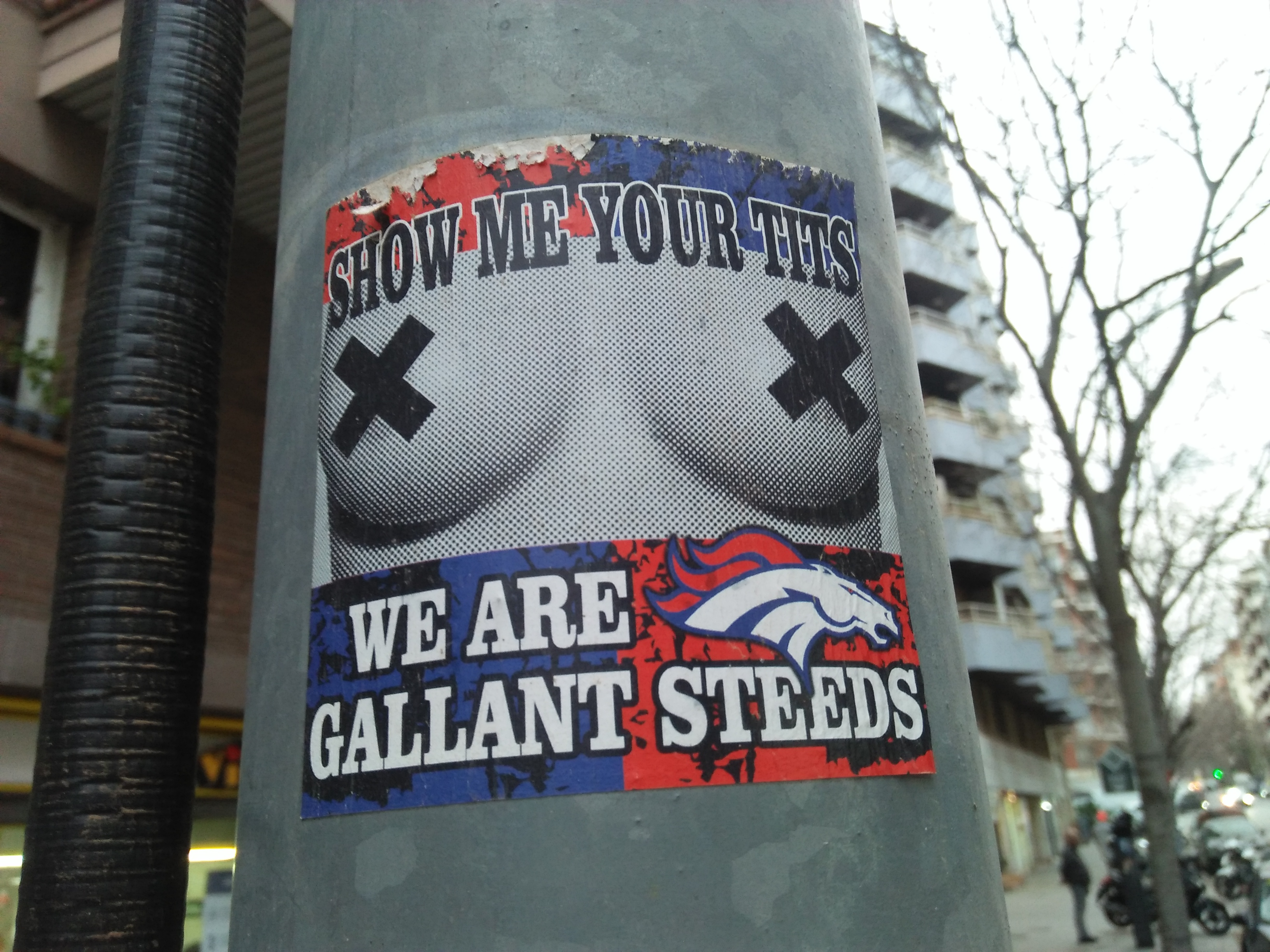 Denver broncos fan sticker
